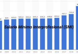 Cual es el salario minimo interprofesional en españa?